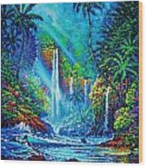 Waterfall Wood Print by Joseph   Ruff