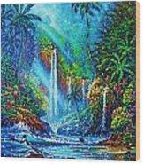 waterfall lV Wood Print