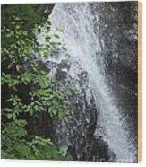 Waterfall Mine Kill State Park New York Wood Print