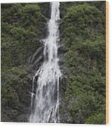 Waterfall Near Valdez Ak Wood Print
