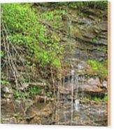 Waterfall On The Way To Thurmond Wood Print