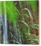 Waterfall Over Ferns Wood Print