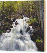 Waterfall Through The Aspens Wood Print