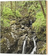 Waterfall Through Woodland Wood Print