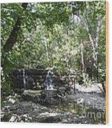 Waterfall Trail Wood Print