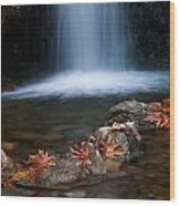 Waterfall And Leaves In Autumn Wood Print