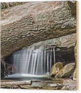 Waterfall Under Fallen Log Wood Print
