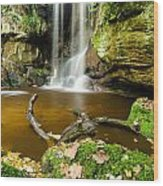 Waterfall With Autumn Leaves Wood Print