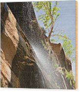 Waterfall Zion National Park Wood Print