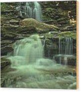 Waterfalling Through Ricketts Glen Wood Print