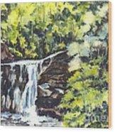 In Central Park N Y C Wood Print