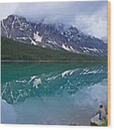 Waterfowl Lake Wood Print