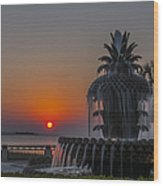 Waterfront Park Sunrise Wood Print