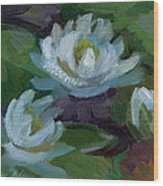 Waterlilies At Martha Lake 2 Wood Print