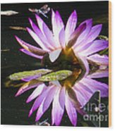 Waterlily And Dragonfly Wood Print