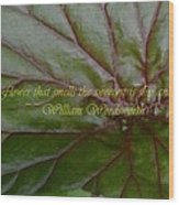 Waterlily Leaf Macro Wood Print