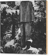Waterman's Statue Wood Print