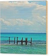 waters of Mexico    Wood Print