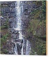 Waterton Waterfall Wood Print