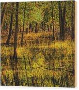 Watery Ramble Wood Print