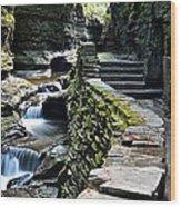 Watkins Glen Exiting The Trail Wood Print