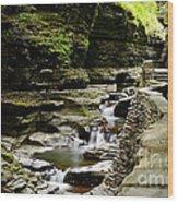 Watkins Glen Wood Print
