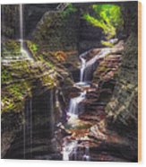 Watkins Glen Rainbow Falls Wood Print by Mark Papke
