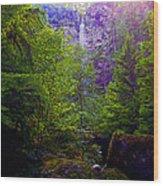 Watson Falls Wood Print