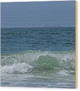 Wave At Seal Beach Wood Print