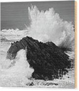 Wave At Shore Acres Bw Wood Print