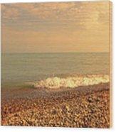 Wave On Rocky Beach Wood Print