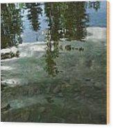 Wavering Reflections Wood Print