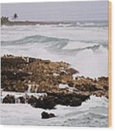 Waves Pounding Costa Maya, Mexico Wood Print