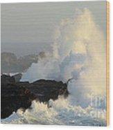 Waves At Salt Point Wood Print