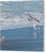 Waves In The Pacific Ocean, Point Reyes Wood Print