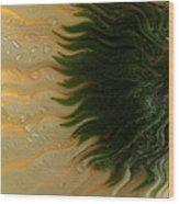 Waves Of Joy Wood Print