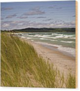 Waves Of Water And Grass Wood Print by Thomas Pettengill
