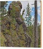 Waving Rock At Yellowstone Wood Print