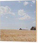 Waving Wheat Homestead Wood Print