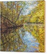 Waxen Autumn 2  Wood Print