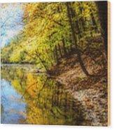Waxen Autumn 3  Wood Print