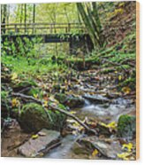 Way Of St. James Bridge Wood Print by Jeffrey Teeselink