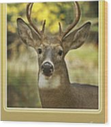 Way To Go Dad Congratulations On A Successful Deer Hunt Wood Print