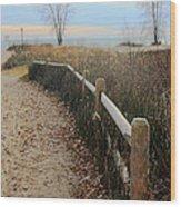 Way To The Beach Wood Print