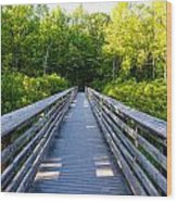 Way To Wilderness Wood Print