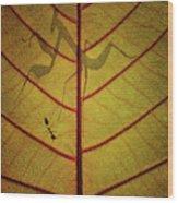 Wayang Wood Print