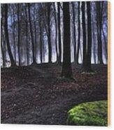 Wayline Wood Print