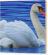 Wayward Swan 2 Wood Print