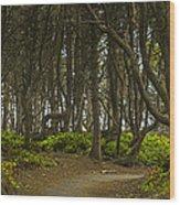 We Follow The Path II Wood Print by Jon Glaser