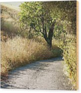 We Will Walk This Path Together Wood Print